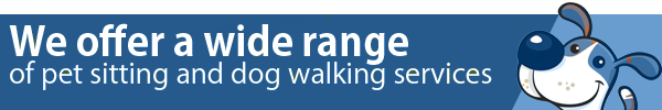 Wide range of pet sitting and dog walking services